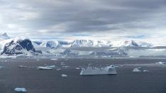 antarctica_klein-105