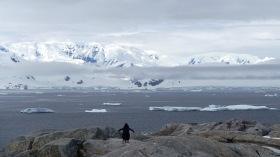 antarctica_klein-106
