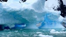 antarctica_klein-121