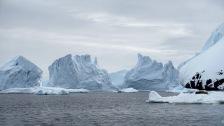 antarctica_klein-122