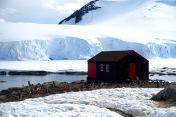 antarctica_klein-144