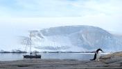 antarctica_klein-147