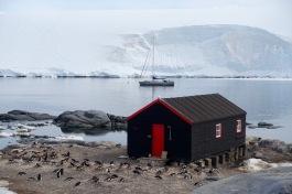 antarctica_klein-149