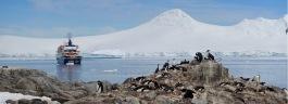 antarctica_klein-150