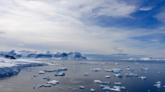 antarctica_klein-157