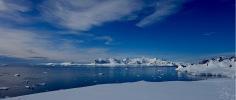 antarctica_klein-159