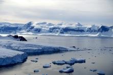 antarctica_klein-162