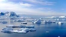 antarctica_klein-167