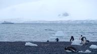 antarctica_klein-17
