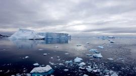 antarctica_klein-193