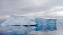 antarctica_klein-194