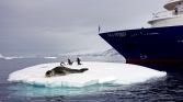 antarctica_klein-209