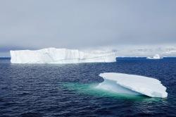 antarctica_klein-22