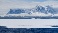 antarctica_klein-46