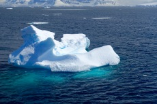 antarctica_klein-47
