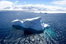antarctica_klein-48