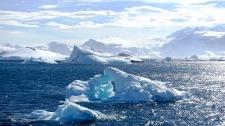 antarctica_klein-54