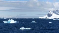 antarctica_klein-57