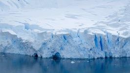 antarctica_klein-78