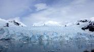 antarctica_klein-90