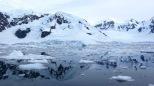 antarctica_klein-95