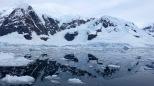 antarctica_klein-96