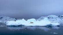 antarctica_klein-97