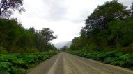 carretera-14-1