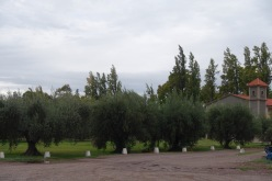 Mendoza - 18