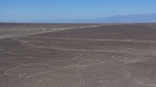 Nazca Ica Paracas - 17
